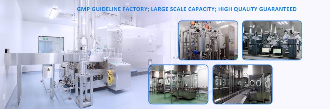 GMP guideline factory.jpg